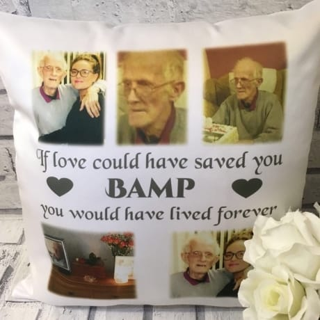 Cushion 22 : If love could have ...