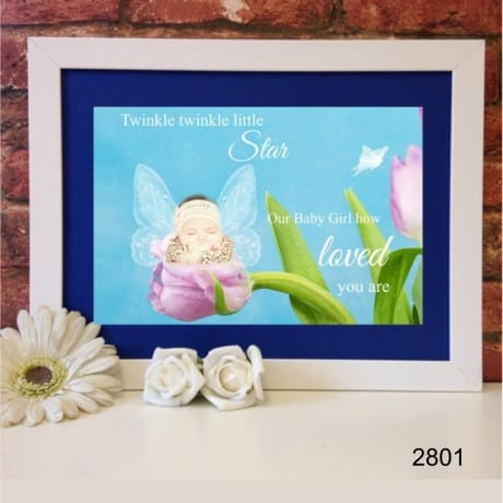 2801-Fairy 2