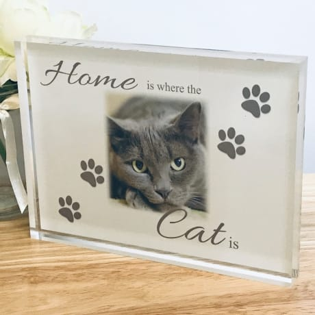 Home Is Where The Cat Is Photo Block