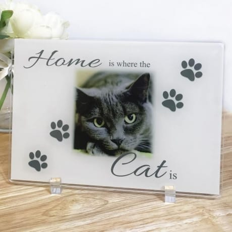 Home Is Where The Cat Is Acrylic Plaque