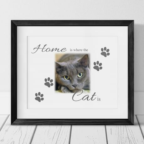 Home Is Where The Cat Is Frame