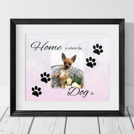 Home Is Where the Dog is Frame