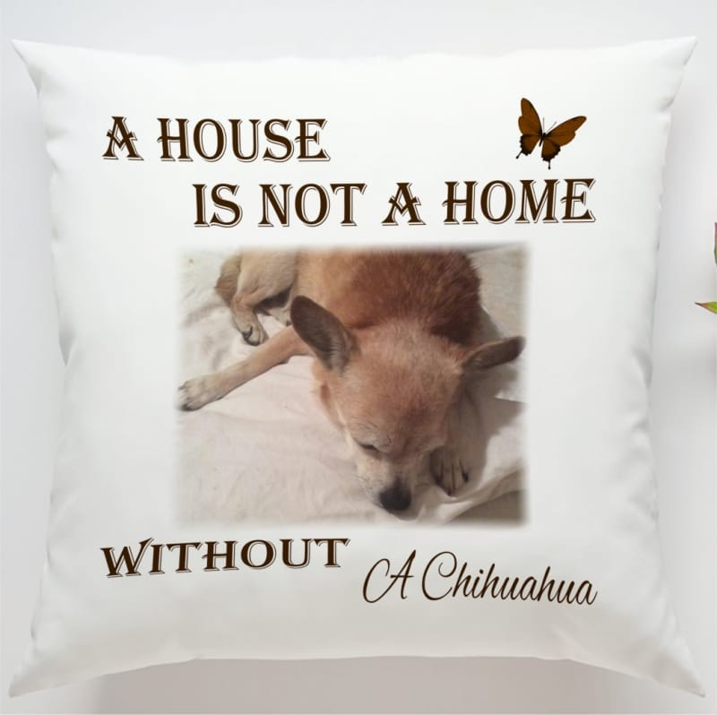 Cushion 9 : A house is not ...