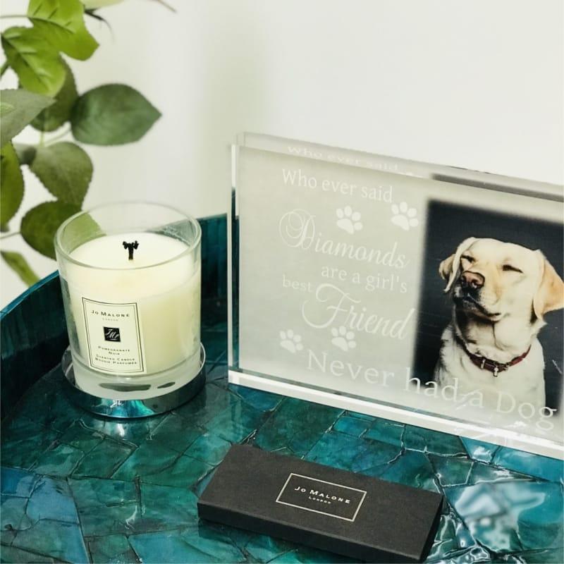 Personalised pet gift