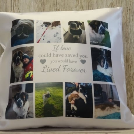 Cushion 1: if love could have saved you